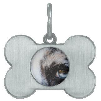 Blue Merle Dog Pet ID Tags