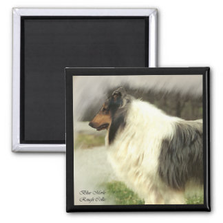 Blue Merle Rough Collie Art Gifts Magnet