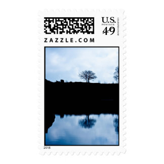 Blue mirror tree postage stamp