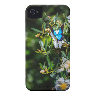 Blue Monarch Butterfly on Flowers iPhone 4 Cover