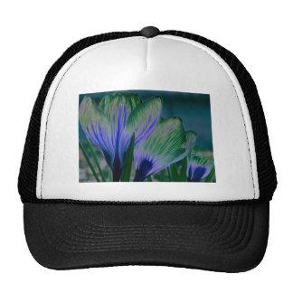 Blue Moon Crocus Mesh Hat