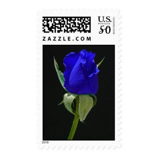 blue moon rose postage