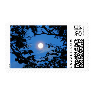 Blue Moon Stamps