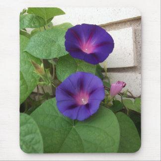Blue Morning Glories Climbing Brick Wall Mouse Pad