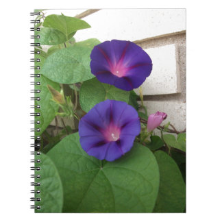 Blue Morning Glories Climbing Brick Wall Notebook