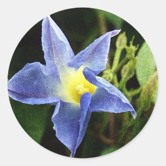 Blue Morning Glory Flower Classic Round Sticker