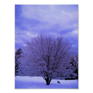 Blue Morning Poster
