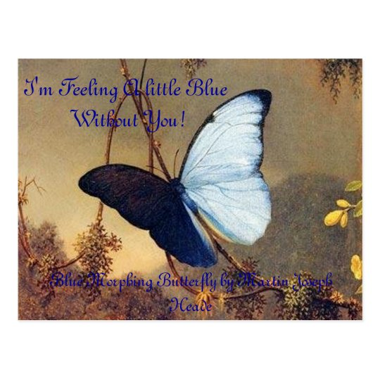 Blue Morphing Butterfly Post Card