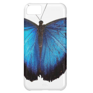 Blue Morpho Butterflie Case For iPhone 5C