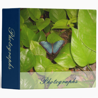 Blue Morpho Butterfly 3 Ring Binder