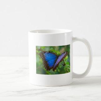 Blue Morpho Butterfly 5x7 Mug