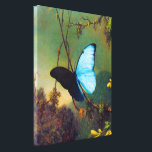 """Blue Morpho Butterfly Canvas Print<br><div class=""""desc"""">Martin Johnson Heade Blue Morpho Butterfly canvas wrap. Oil on canvas from 1865. Martin Johnson Heade was one of the great nature painters of the nineteenth century. Though he devoted most of his time to flowers, hummingbirds and landscapes, Blue Morpho Butterfly is one of Heade's most beautiful and captivating paintings....</div>"""