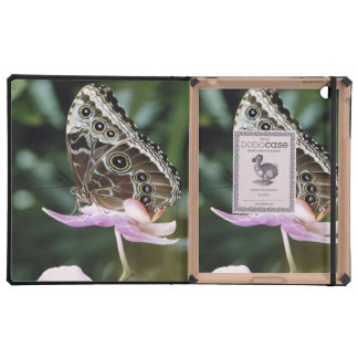 Blue Morpho Butterfly Covers For iPad