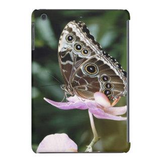 Blue Morpho Butterfly iPad Mini Cases