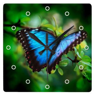 Blue Morpho Butterfly Wall Clocks