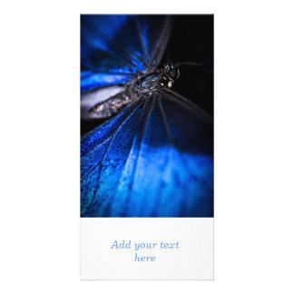 Blue Morpho butterfly closeup Photo Card