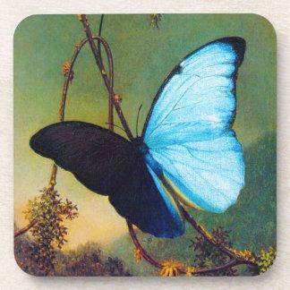 Blue Morpho Butterfly Coasters