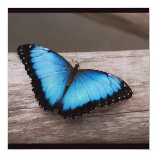 Blue Morpho Butterfly Custom Invites