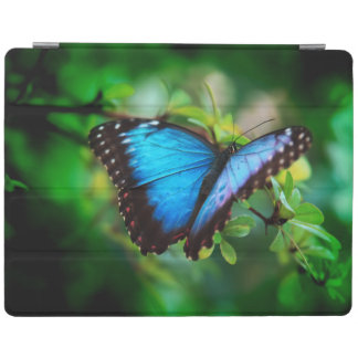 Blue Morpho Butterfly iPad Cover