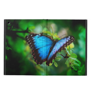 Blue Morpho Butterfly iPad Air Cover