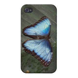 Blue Morpho Butterfly iPhone4 iPhone 4/4S Case