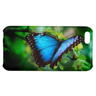 Blue Morpho Butterfly iPhone 5C Covers