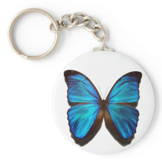 Blue Morpho Butterfly Keychain