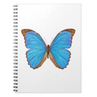Blue Morpho Butterfly (Menelaus Blue Morpho, Morph Notebook