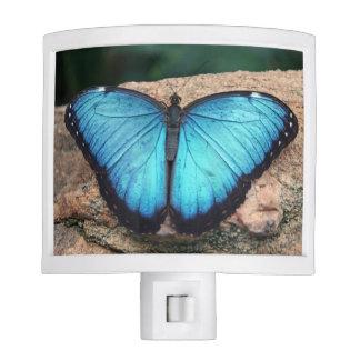 Blue Morpho Butterfly Nightlight Night Lights