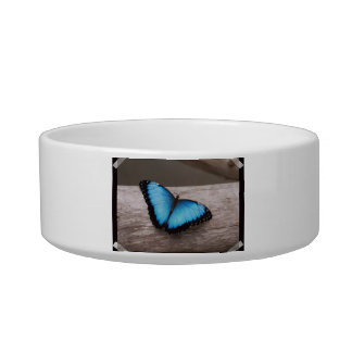 Blue Morpho Butterfly Pet Water Bowl