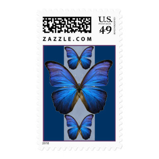 Blue Morpho Butterfly Postage Stamps