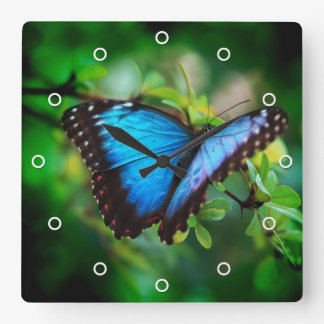 Blue Morpho Butterfly Square Wall Clocks