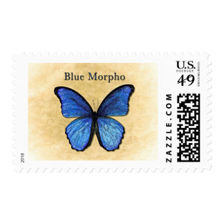 Blue Morpho Butterfly Stamp