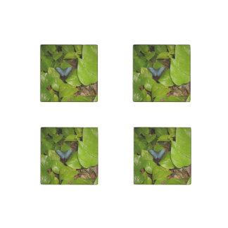 Blue Morpho Butterfly Stone Magnet