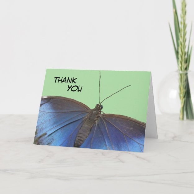 Blue Morpho Butterfly Thank You Greeting Card