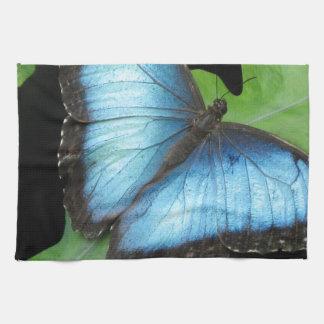 Blue Morpho Butterfly Towel