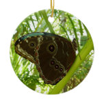 Blue Morpho Butterfly Tropical Nature Photography Ceramic Ornament