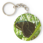 Blue Morpho Butterfly Tropical Nature Photography Basic Round Button Keychain