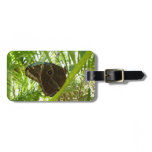 Blue Morpho Butterfly Tropical Nature Photography Luggage Tag
