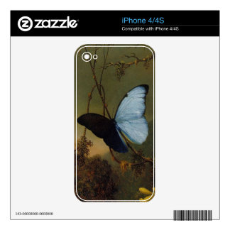 Blue Morpho  Butterfly Vintage iPhone 4/4S Skin Decals For The iPhone 4