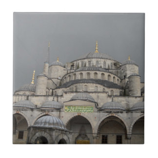 Blue Mosque in Istanbul, Turkey Tile
