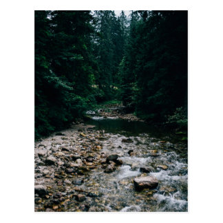 Blue Mountain River With Rocks and Forest Postcard