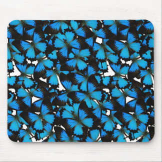 Blue Mountain Swallowtail Mouse Pads