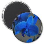 Blue Mystique 2 Inch Round Magnet