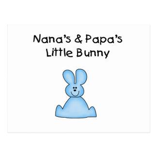 Blue Nana's and Papa's Little Bunny Postcard