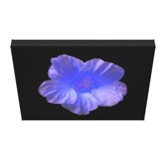 Blue Nasturtium Flower Canvas Print