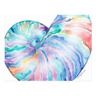 Blue Nautilus Infinity Shell Watercolor Postcard
