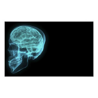 Blue Neon Side View X-ray Skull on Black Poster