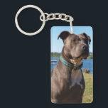 """Blue Nose Keychain<br><div class=""""desc"""">Blue Nose Pitbull.</div>"""