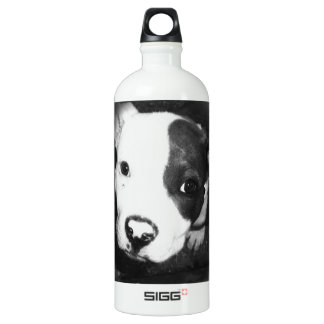 Blue Nose Pitbull Puppy Aluminum Water Bottle